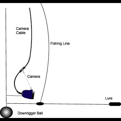 Deep Blue Underwater Video Camera Deployment