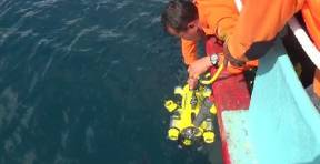 JW Fisher SeaLion-2 ROV